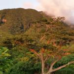 home-image-mountain-sun